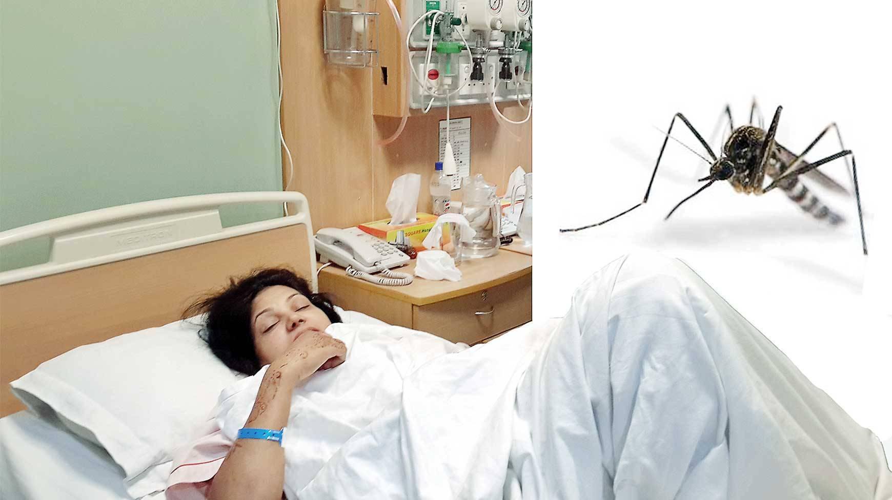 Dengue patient care