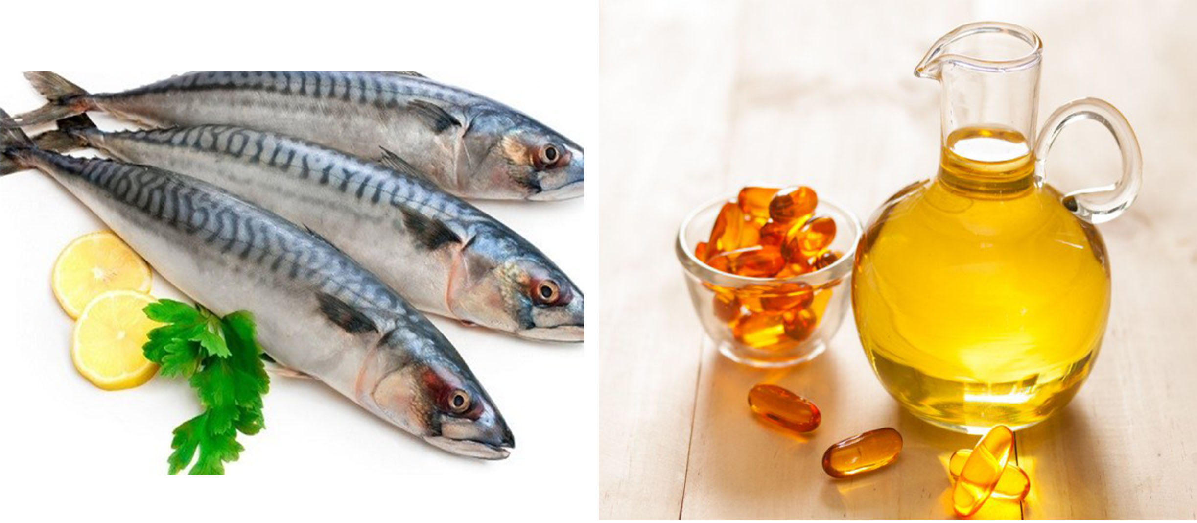 oil fish health benifits